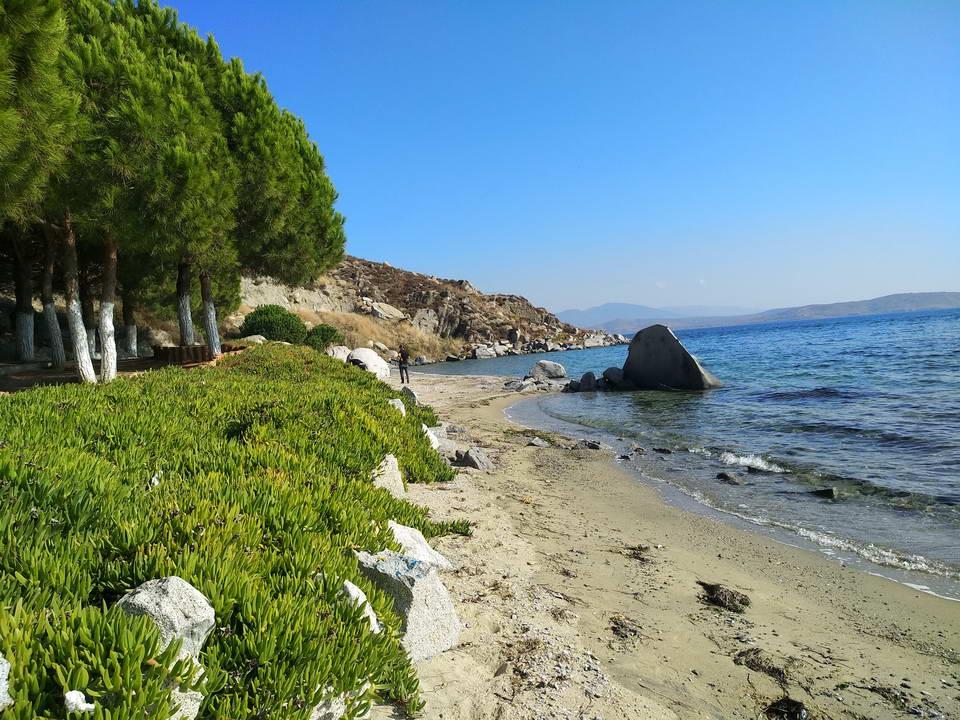 Tavşanlı Plajı