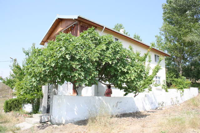 Villa Güliş 1